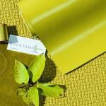 Brentano_ColorForecast_2017_Chartreuse